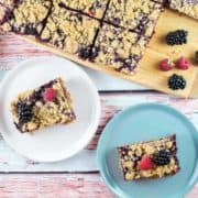 Berry Oatmeal Crumble Bars: a crisp oatmeal shell surrounding a sweet homemade berry jam - delicious with blueberries, blackberries, raspberries, or strawberries! {Bunsen Burner Bakery} #berries #jambars #summerdesserts #oatmealbars #baking