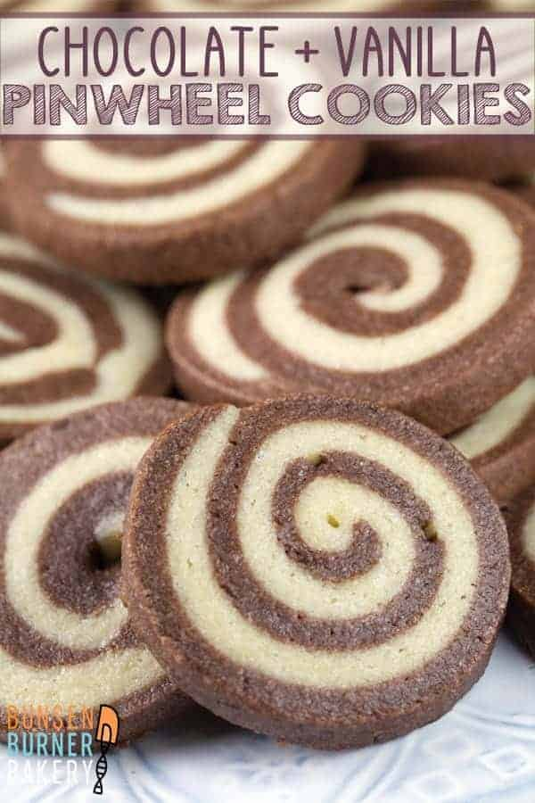 Chocolate Pinwheel Cookies: the perfect combination of soft and crispy, chocolate and vanilla, fun to make and visually stunning. #bunsenburnerbakery #cookies #pinwheelcookies #christmascookies