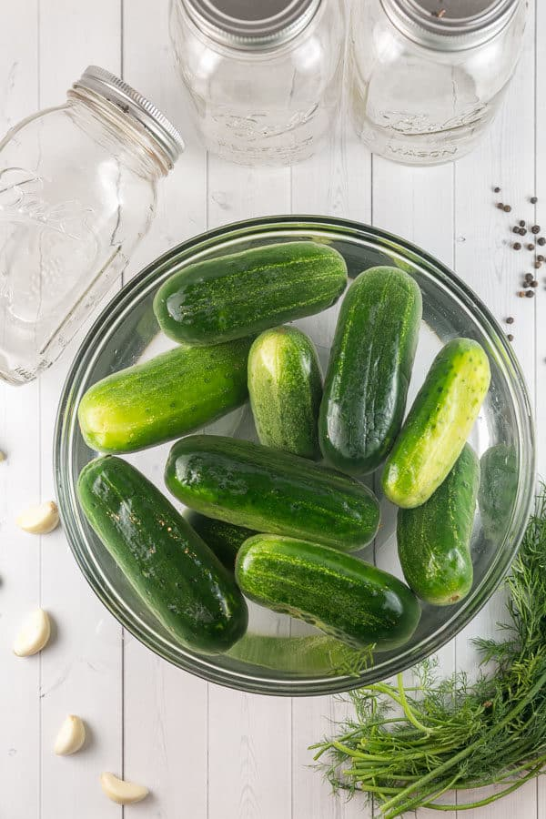 kirby cucumbers soaking in a large bowl of ice water