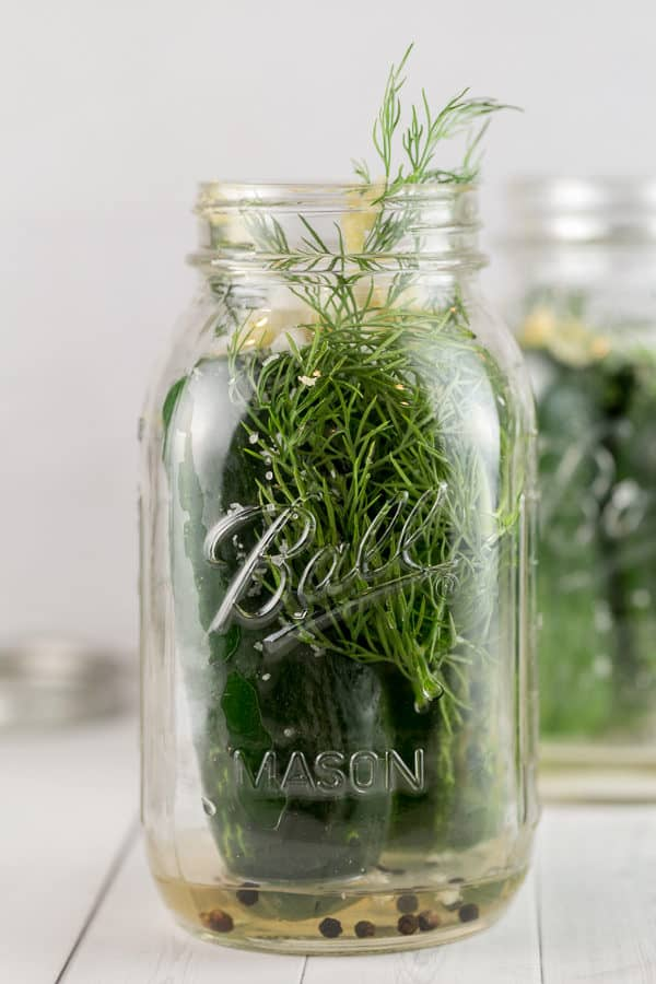 mason jar with whole kirby cucumbers and sprigs of dill