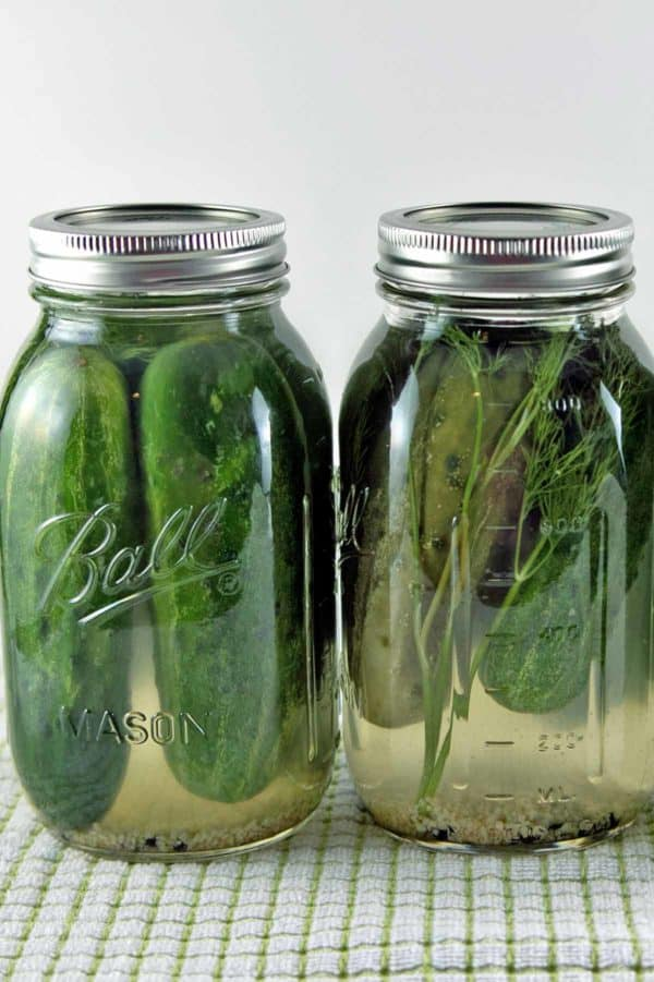 Refrigerator pickles: learn the secret to extra-crunchy, garlicky dill pickles. So simple! {Bunsen Burner Bakery}
