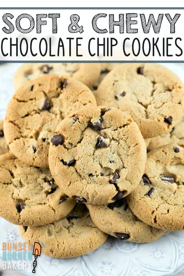 Soft and Chewy Chocolate Chip Cookies: mixed in one bowl with no refrigeration step before baking, this easy chocolate chip cookie recipe makes the BEST homemade cookies!#bunsenburnerbakery #cookies #chocolatechipcookies #chocolate
