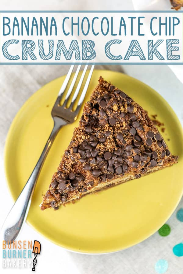 Banana Chocolate Chip Crumb Cake: extra moist banana cake with two layers of chocolate cinnamon streusel. The perfect easy treat for breakfast, brunch, or dessert! #bunsenburnerbakery #cake #bananacake #crumbcake #coffeecake #breakfast #brunch