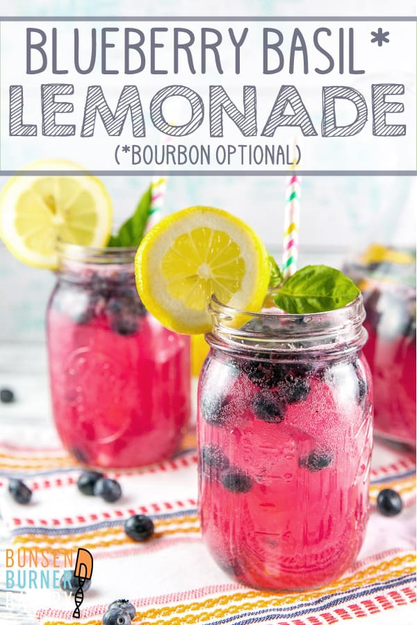Blueberry Basil Lemonade: Celebrate the best parts of summer with sparkly freshly squeezed blueberry basil lemonade (cocktail or mocktail) - made from easy homemade lemonade and fresh summer produce.  It's the perfect made ahead party drink for summer! #bunsenburnerbakery #recipe #drink #lemonade #cocktail #bourbon