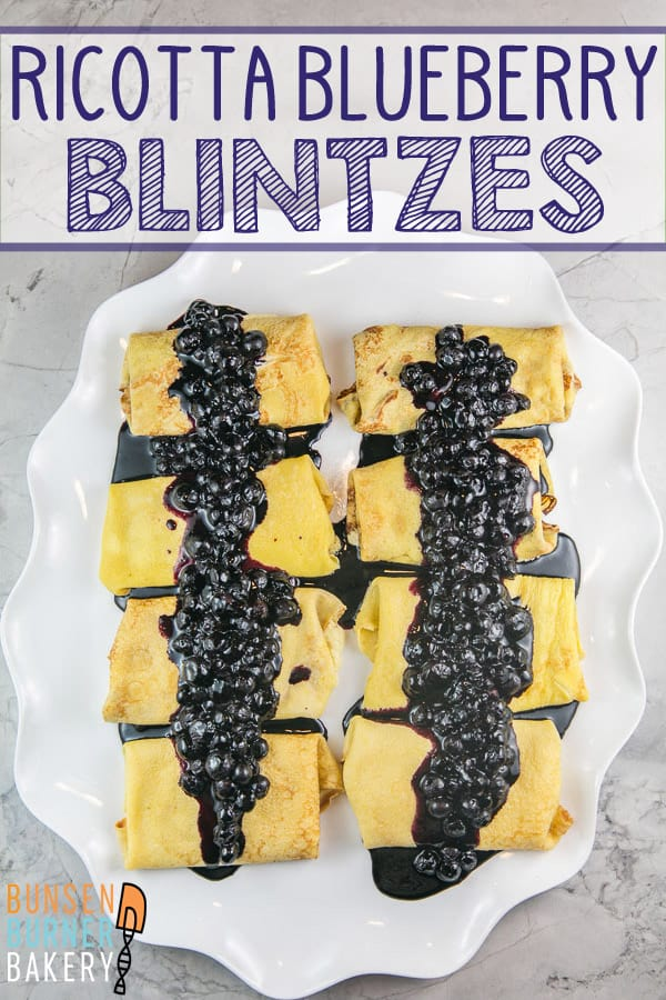 Blueberry Blintzes: Thin flour pancakes filled with creamy ricotta and a homemade blueberry sauce, these baked blueberry blintzes are an all-time brunch favorite! Plus all the tips you need to make them ahead of time. #bunsenburnerbakery #blintzes #brunch #breakfast