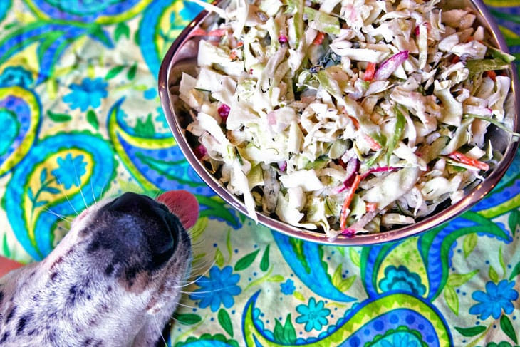 Horseradish Dill Coleslaw | Gluten Free | Vegetarian | Summer Sides | Bunsen Burner Bakery