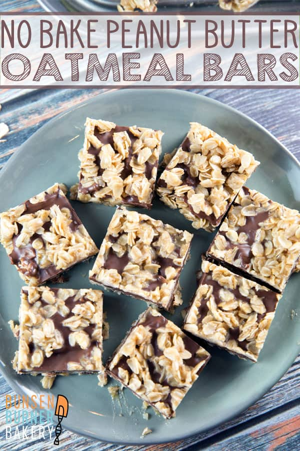 No Bake Peanut Butter Oatmeal Bars: easy to make and perfect to share, these peanut butter oatmeal bars made without graham crackers are also naturally gluten free.  A great party recipe! #bunsenburnerbakery #peanutbutter #glutenfree #nobakedesserts #peanutbutterbars