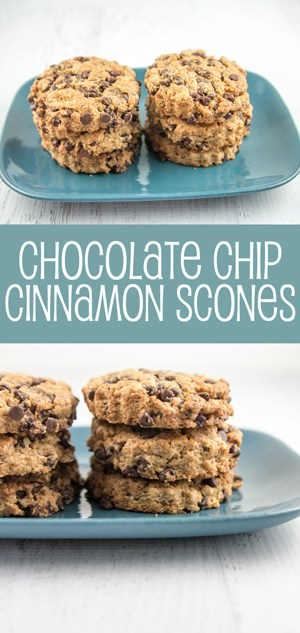 Chocolate Chip Cinnamon Scones: soft and light inside, perfectly crunchy outside. {Bunsen Burner Bakery}