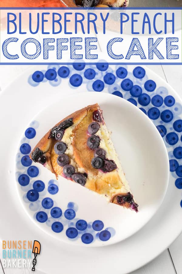 Blueberry Peach Coffee Cake: the perfect easy breakfast, dessert, or mid-afternoon snack recipe, using fresh summer fruit. #bunsenburnerbakery #cake #coffeecake #peach #blueberry