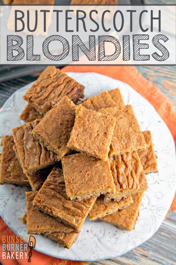 Butterscotch Blondies: a classic recipe for the best chewy blondies, packed full of delicious butterscotch flavor! Bake in a 9x13 pan so you have enough to share! #bunsenburnerbakery #blondies #butterscotch #dessertbars