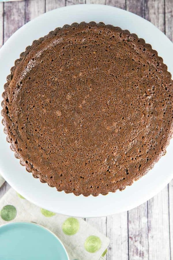 Chocolate Buttermilk Pie: sweet, custardy, and insanely chocolatey. This pie is worthy of a special event, but easy enough for a Tuesday. {Bunsen Burner Bakery} #bunsenburnerbakery #pie #chocolatepie #buttermilkpie #oreocrust
