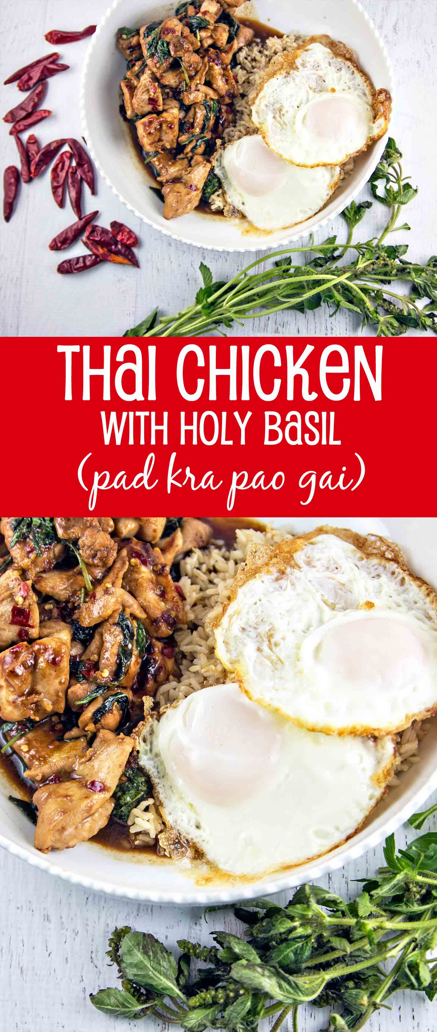 Thai Chicken with Holy Basil (pa kra pao gai): Stir fried chicken and holy basil combine quickly into a delicious sweet and spicy dish -- Thailand's most popular street food! {Bunsen Burner Bakery}