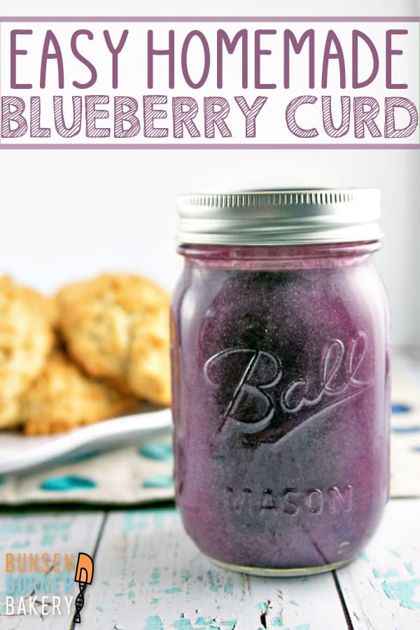 Blueberry Cardamom Curd: Learn how to make this easy blueberry curd recipe! Silky smooth curd bursting with blueberry flavor - perfect for topping muffins or scones, filling pies, or layering in cakes! #bunsenburnerbakery #curd #blueberry #blueberrycurd