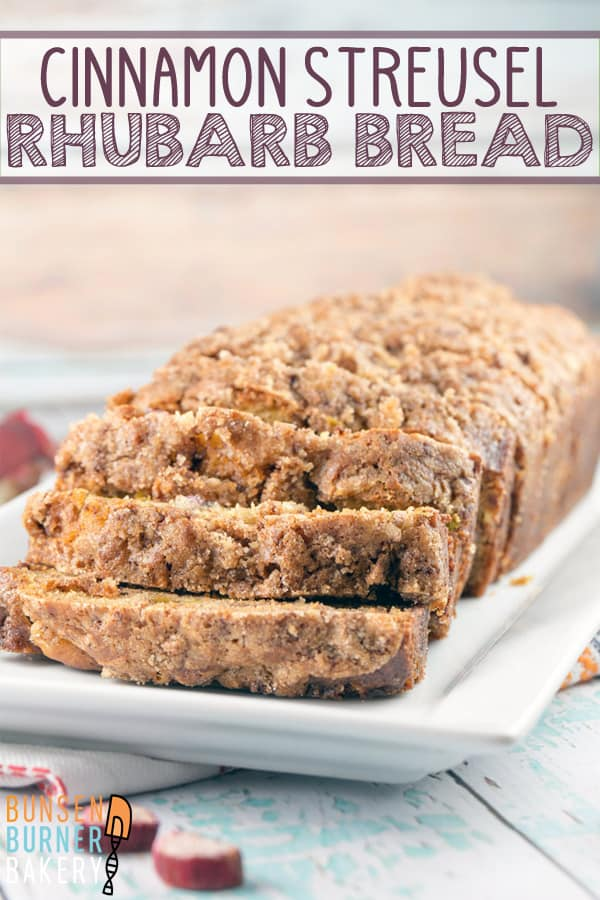 Cinnamon Streusel Rhubarb Bread: an easy one bowl quick bread jam packed with fresh rhubarb and a double dose of cinnamon streusel layered into the bread and on top. #bunsenburnerbakery #rhubarb #quickbread #streuselbread #rhubarbbread