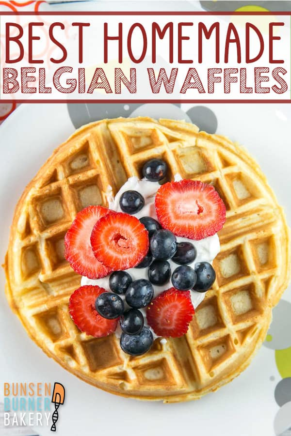 Best Homemade Belgian Waffles: The best Belgian waffle recipe - soft and fluffy insides, crispy outside! Made with buttermilk, these waffles are delicious plain or piled high with toppings. #bunsenburnerbakery #waffles #belgianwaffles #breakfast
