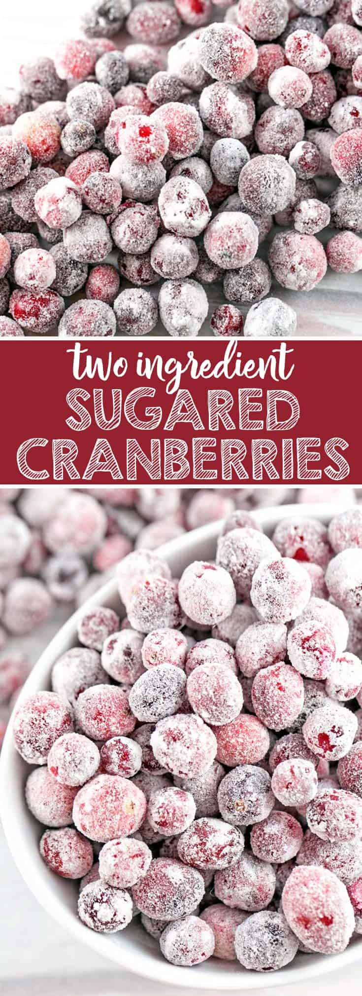 Sugared Cranberries: these two ingredient sweet-tart sugared cranberries are the perfect accompaniment to fancy desserts, charcuterie and cheese boards, or holiday snacking. {Bunsen Burner Bakery} #cranberries #sugaredcranberries #holiday #christmas