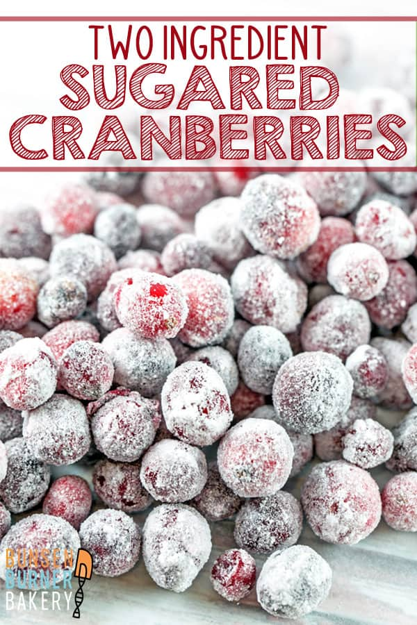 Sugared Cranberries: these two ingredient sweet-tart sugared cranberries are the perfect accompaniment to fancy desserts, charcuterie and cheese boards, or holiday snacking. #bunsenburnerbakery #cranberries #sugaredcranberries #holiday #christmas