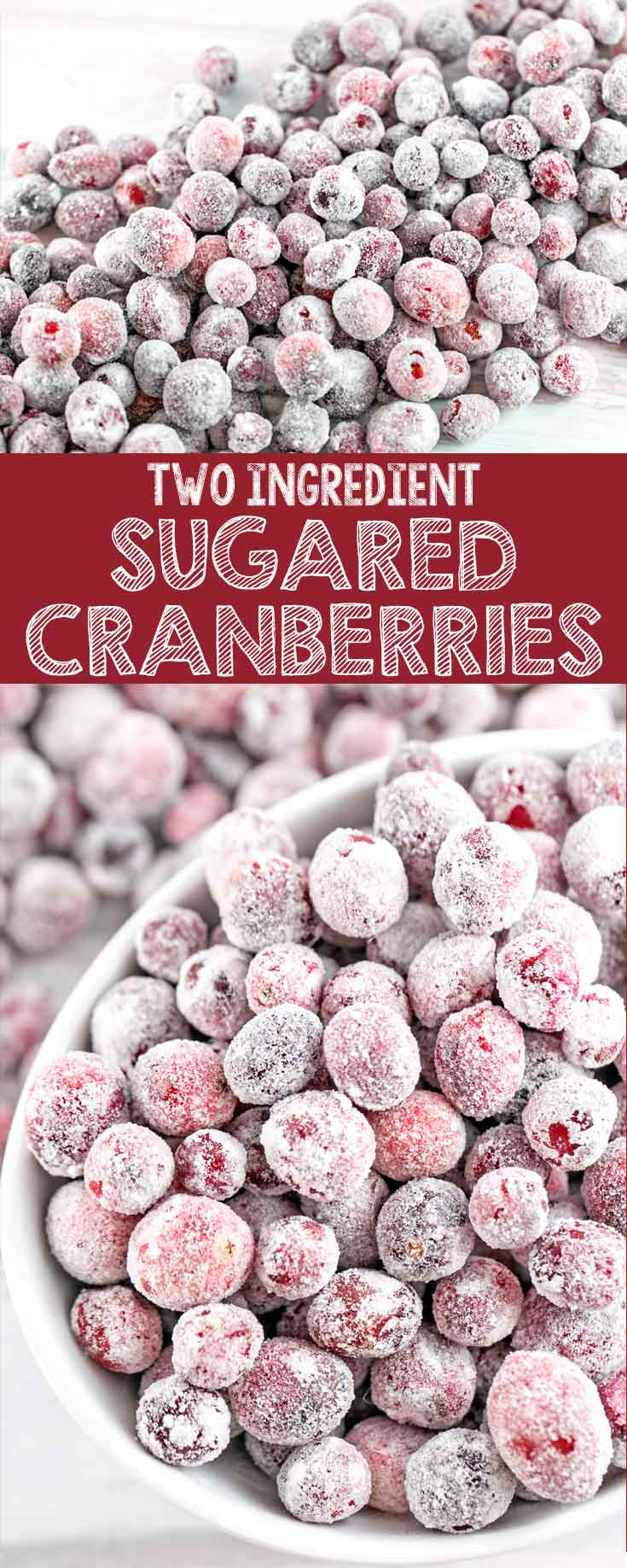 Sugared Cranberries: these two ingredient sweet-tart sugared cranberries are the perfect accompaniment to fancy desserts, charcuterie and cheese boards, or holiday snacking. {Bunsen Burner Bakery}
