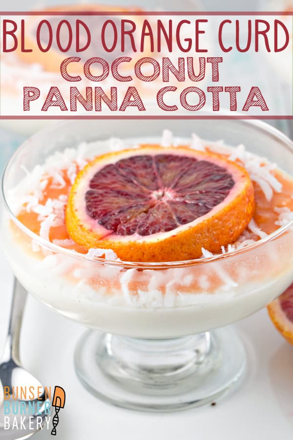 Coconut Panna Cotta with Blood Orange Curd: smooth and creamy coconut panna cotta paired with citrusy blood orange curd -- it's the perfect easy, impressive spring dessert. #bunsenburnerbakery #pannacotta #coconut #bloodorange #nobakedesserts