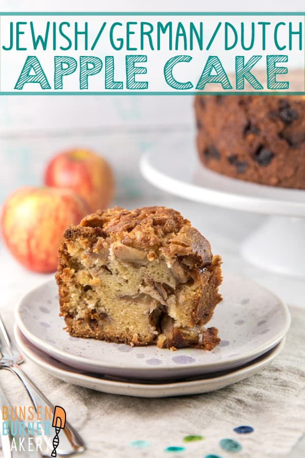 Jewish Apple Cake: an easy mix by hand dairy free apple cake. Full of apples and cinnamon, it's the perfect fall recipe! #bunsenburnerbakery #cake #applecake #jewishapplecake
