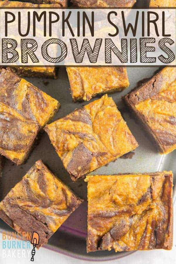 Pumpkin Swirl Brownies: easy mix-by-hand chocolatey brownies swirled with pumpkin batter for a customizable fall treat! #bunsenburnerbakery #brownies #pumpkin #falldesserts