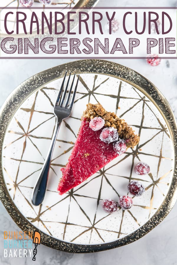 Cranberry Curd Pie with Gingersnap Crust: A silky-smooth cranberry curd in a gingersnap hazelnut crust. The perfect holiday pie! #bunsenburnerbakery #cranberrypie #pie #fruitcurd
