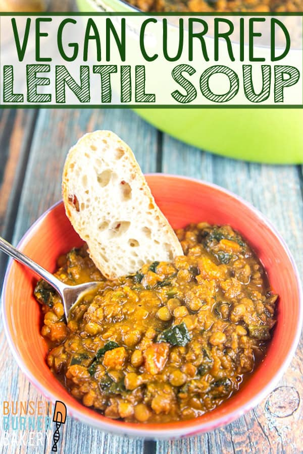 Vegan Curried Lentil Soup: Thick and creamy, this lentil soup is bursting with flavor and made entirely without cream, making it perfect to freeze and store for later. #bunsenburnerbakery #lentilsoup #vegan #glutenfree #soup