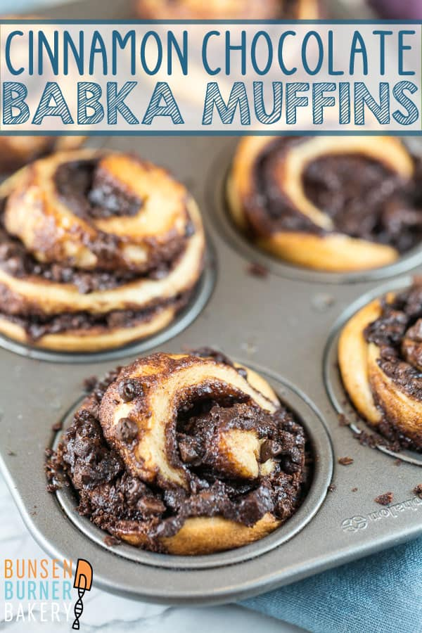Cinnamon Chocolate Babka Muffins: A rich, buttery yeast dough, filled with beautiful swirls of chocolate and baked in individual sizes in a muffin tin. Same great babka taste, baked in half the time! #bunsenburnerbakery #babka #muffins #chocolatebabka #yeastbread