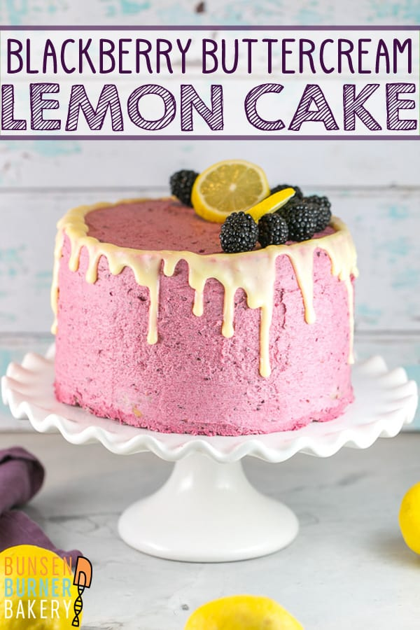 Lemon Curd Cake with Blackberry Buttercream Frosting: a triple level layer cake with lemon cake from scratch, filled with homemade lemon curd, and covered in fresh blackberry frosting and a lemon glaze.  The perfect homemade birthday cake for lemon lovers! #bunsenburnerbakery #lemoncake #lemoncurd #layercake #birthdaycake