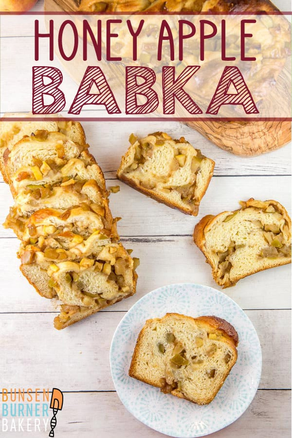 Honey Apple Babka: Full if cinnamon and honey, this apple babka is perfect for fall! Step-by-step instructions make this a no-fail yeast bread project even for beginning bakers. #bunsenburnerbakery babka #bread #yeastbread #apples