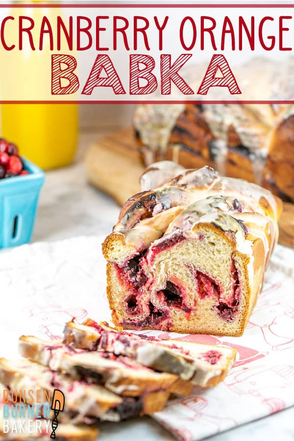 Cranberry Orange Babka: Full of homemade cranberry orange filling and topped with an orange glaze, this homemade babka bread is perfect for fall and winter holidays. With easy to follow instructions and tips to make ahead or spread the baking over several days, this is the perfect babka for beginners, too! #bunsenburnerbakery #bread #yeastbread #babka #cranberries #cranberryorange