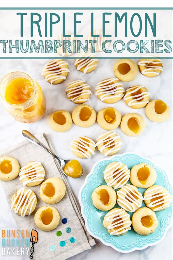 Lemon Thumbprint Cookies: Filled with lemon curd, topped with lemon glaze, and baked with lemon zest, these triple lemon thumbprint cookies are surprisingly quick and easy - but seriously delicious! #bunsenburnerbakery #thumbprintcookies #cookies #lemon #lemoncurd
