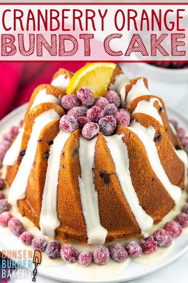 Cranberry Orange Bundt Cake: A buttery pound cake filled with fresh or frozen cranberries and orange zest, with an orange vanilla glaze -- this easy Cranberry Orange Bundt Cake is the perfect Thanksgiving, Christmas, or winter cake! #bunsenburnerbakery #bundtcake #cranberries