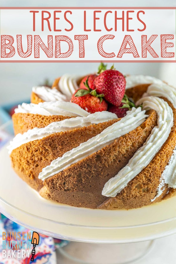 Tres Leches Bundt Cake: Adapt a traditional easy tres leches cake recipe into a beautiful bundt cake! Sponge cake soaked in three types of milk and covered with whipped cream - perfect for birthdays or celebrations.