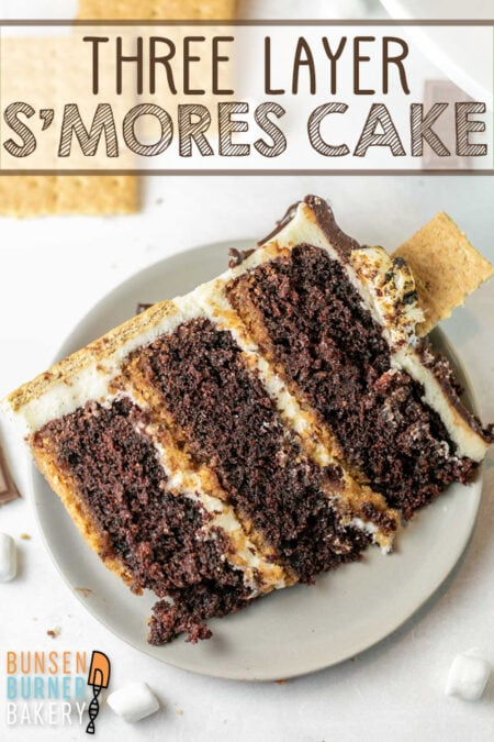 S'mores Cake: With a graham cracker crust, moist chocolate cake, marshmallow fluff buttercream, milk chocolate ganache, and toasted marshmallow topping, this three layer s'mores cake is the ULTIMATE cake for s'mores lovers!